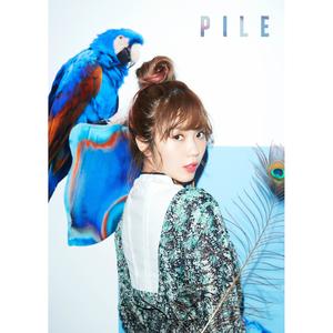 PILE【初回限定盤B(CD+DVD)】